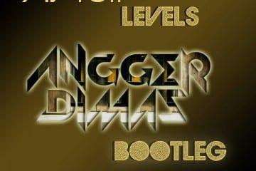 Avicii-Levels-Bootleg-Angger-Dimas-Youredm