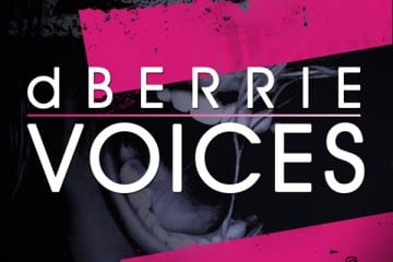 dberrie-voices-youredm-download-original-mix-flamingo