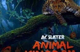 AC Slater Animal Kingdom DJ Mix