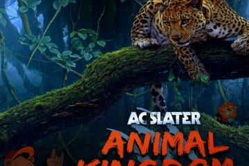AC Slater Animal Kingdom DJ Mix