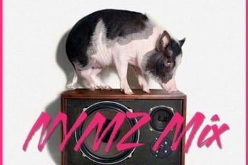 Tommy Trash - Trapple Pig (Nymz Mix)