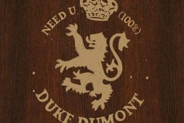 Duke Dumont - Need You (100%)