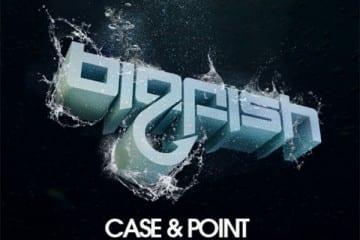 Case-&-Point