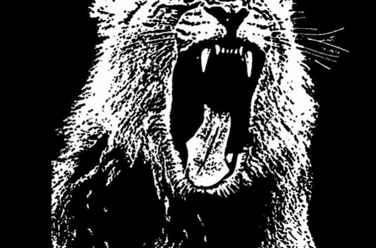 animals-martin-garrix