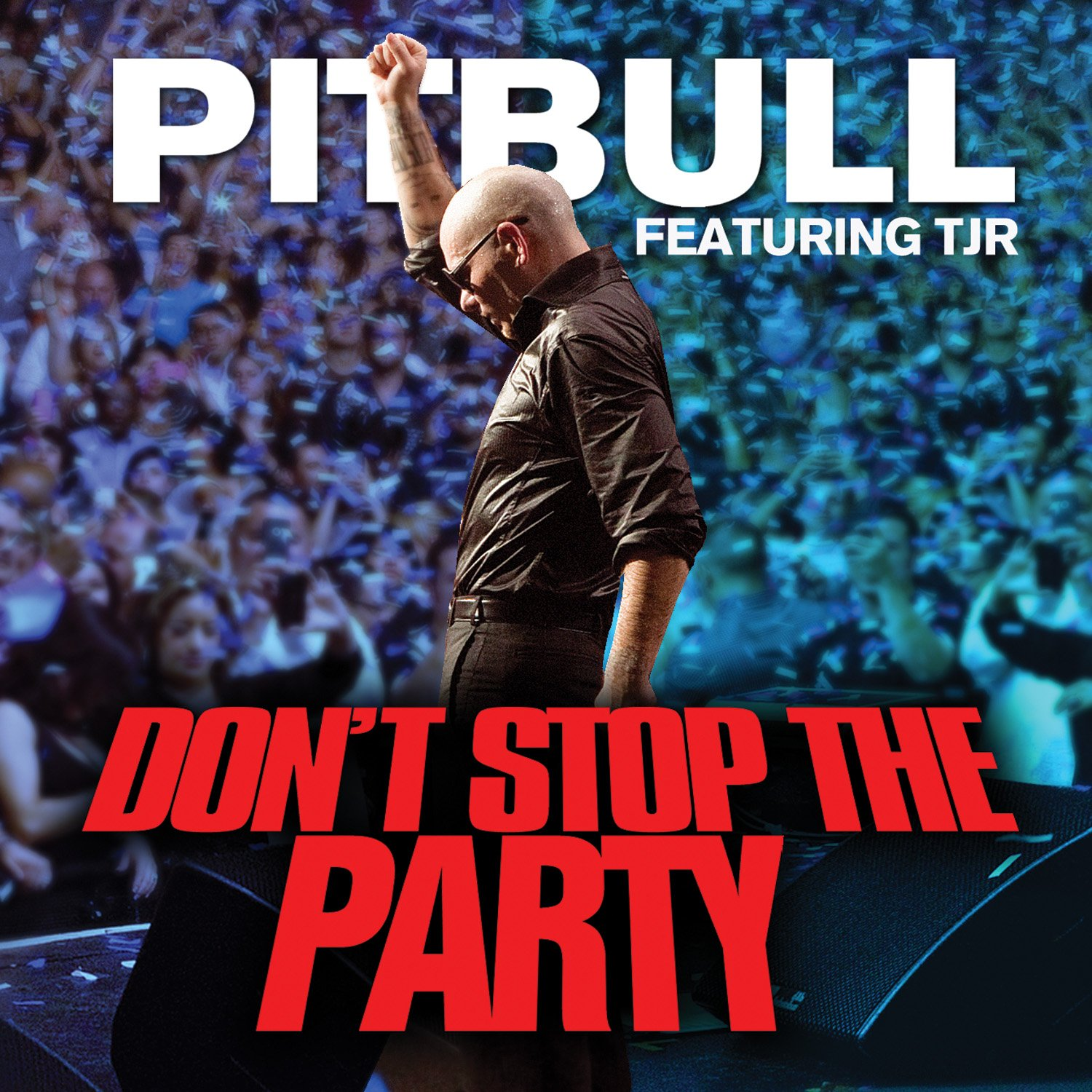 Free mp3 download (pitbull ft. Tjr don't stop the party) youtube.