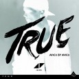 True Remix Album