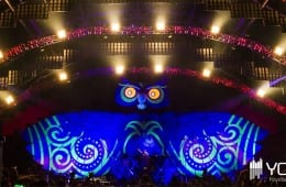 electric-daisy-carnival-new-york-2014-live-sets-edm-edc