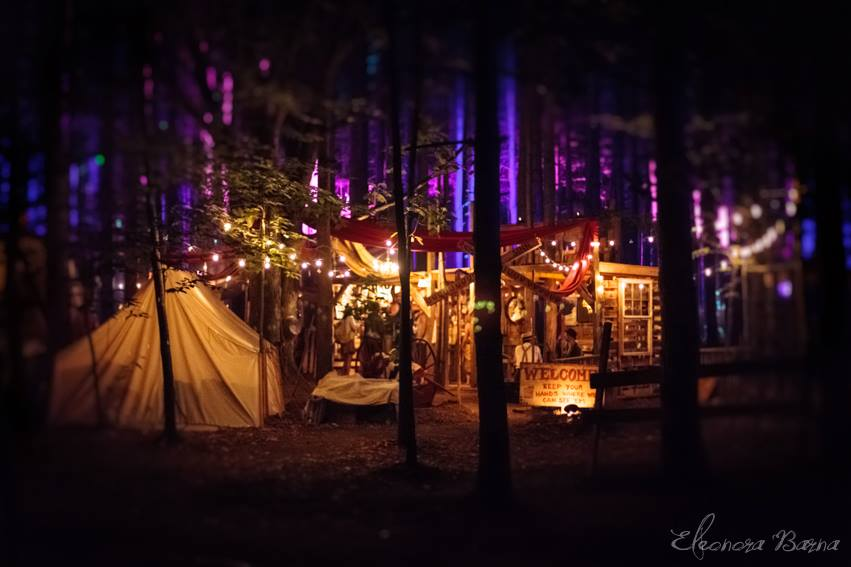 electric_forest-1