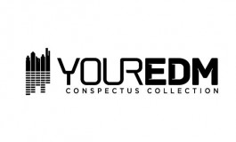 Your EDM's Collection Conspectus Chapter #35