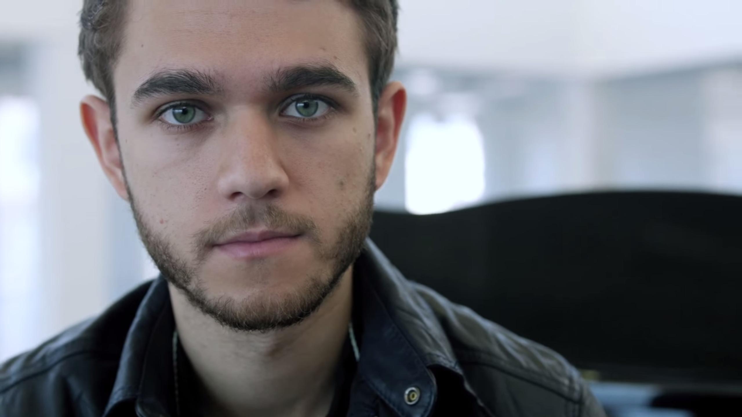 Zedd Is The Face Of A ...