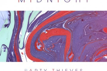 Party Thieves