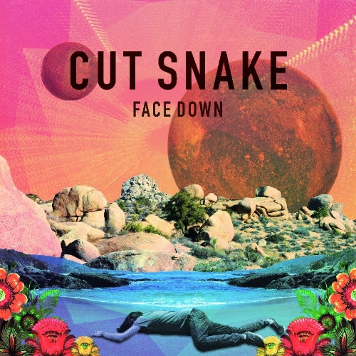 cut snake face down debut track house