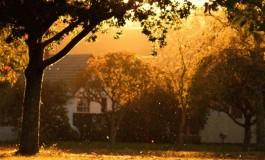 Sunrise Sessions 040: Vitodito - Salty (Solid Stone Remix) [Trance]
