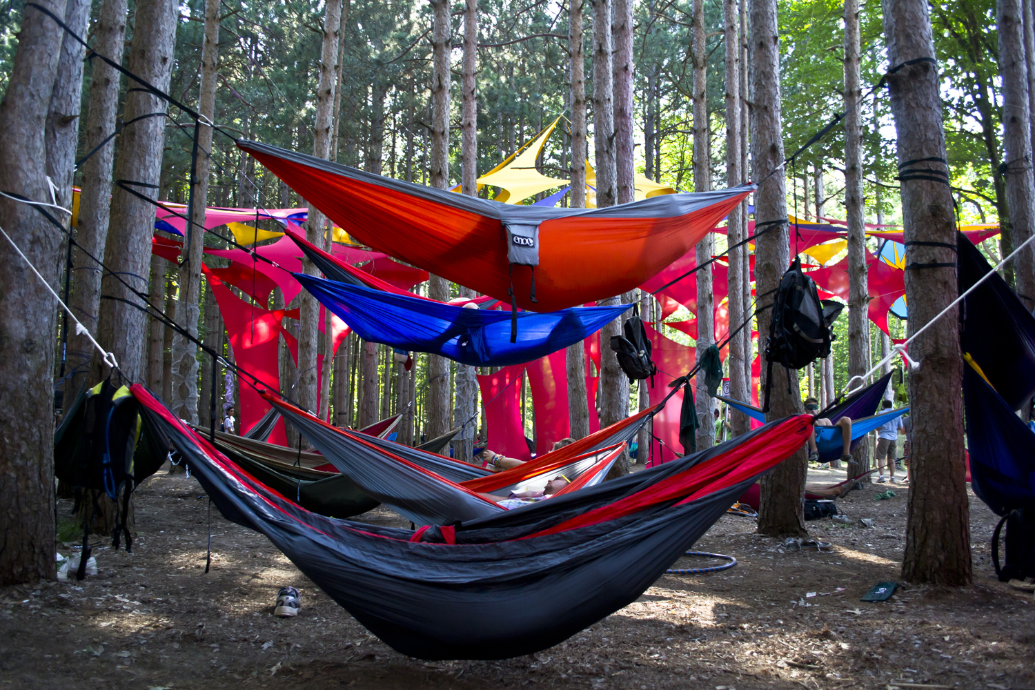 afternoon basic enos hammocks americas takeover students category in the of hammocking hammock plaza simply enjoying