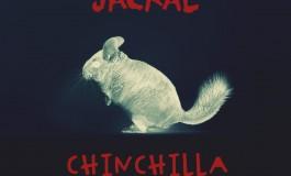 Jackal - Chinchilla (Woolymammoth Remix) [Youredm Premiere]