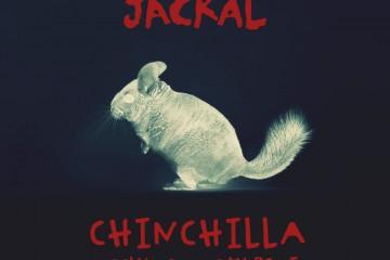 Chinchilla Woolymammoth Remix