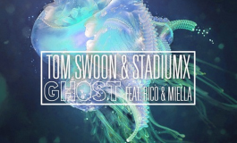 Tom Swoon & Stadiumx - Ghost (LZRD Remix) [Free Download]