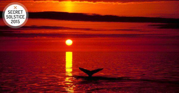 midnight sun secret solstice