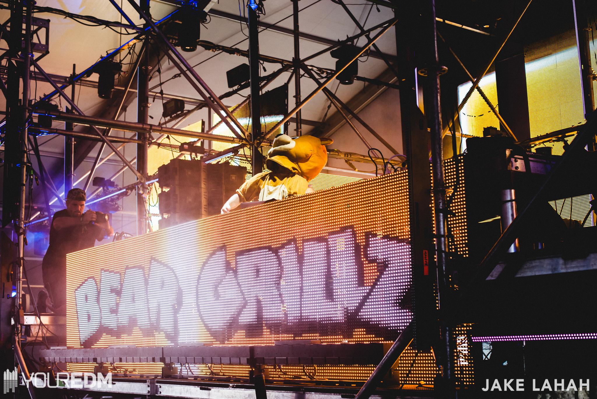 bear-grillz_28859859505_o