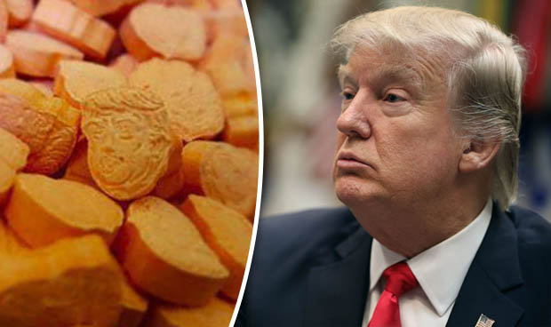 Image result for trump ecstasy