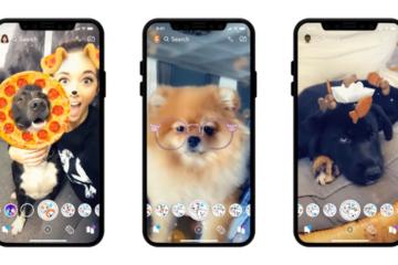 Snapchat Dog Filters