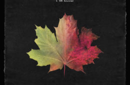Blanke - Incinerate ft. GG Magree 2