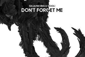Sullivan King & Wooli