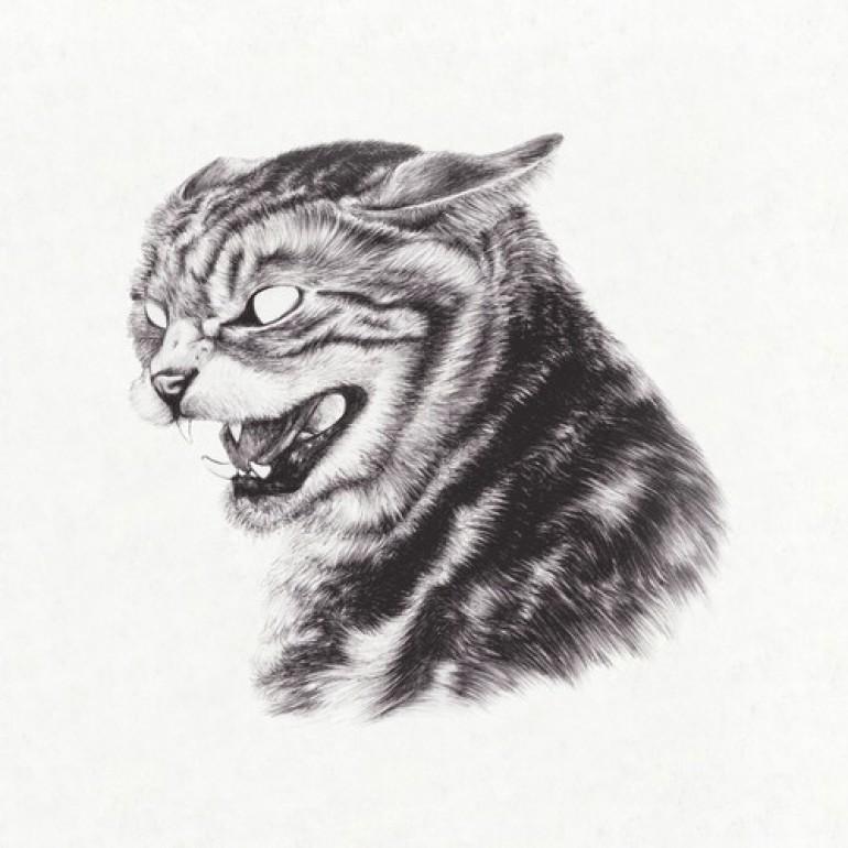 Great Dane releases stunning new Beta Cat LP