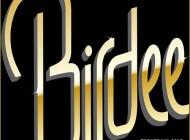Birdee - Tornera' Il Sole [Free Download]