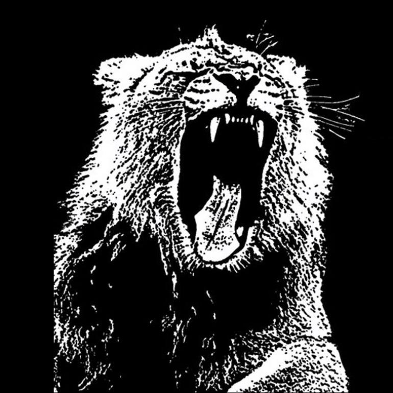 Martin Garrix – Animals (Official Video)
