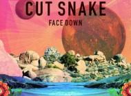 Cut Snake - Face Down